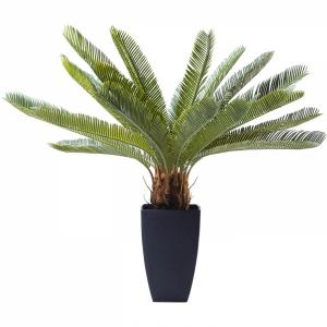 Dekorativní rostlina Cycas Tree 78 cm