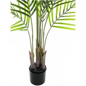 Europalms Areca palma s veľkými listami, 125 cm