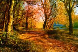 Fototapeta Jeseň v parku 3269 - vliesová