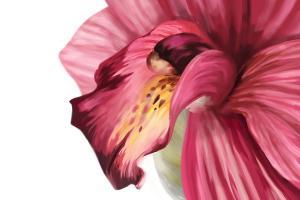 Fototapety do spálne Ružový kvet 18502 - vliesová