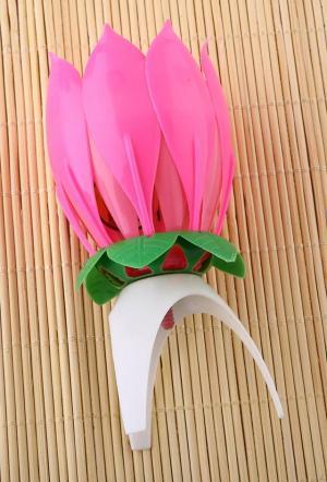 Hudobný lotus