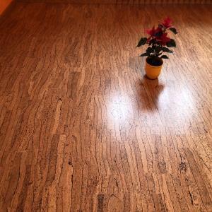 Korková plovoucí podlaha Corkline Zebra HRN