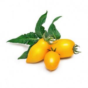 Lingot so semenami žltých mini paradajok do inteligentných kvetináčov Véritable