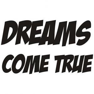Nálepka na stenu - Dreams come true  _ttx21
