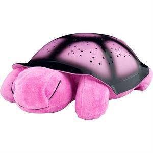 Nočná korytnačka ružová