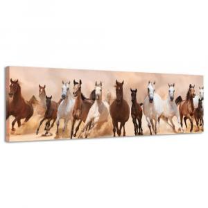 Obraz na plátne Panoráma, Kone, 36x118cm