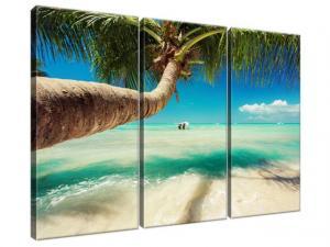 Obraz na plátne Pekná palma pri Karibskom mori 90x60cm 3521A_3J