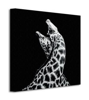 Obraz na plátne Zaľúbené žirafy Evariste Nicolas 40x40cm WDC95261