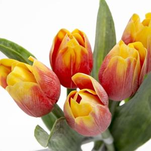 Paramit Tulipán kus 40cm červeno-žltý 107 R