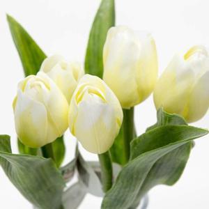 Paramit Tulipán kus 40cm krémový 107 W