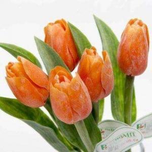 Paramit Tulipán kus 40cm oranžový 107 O1