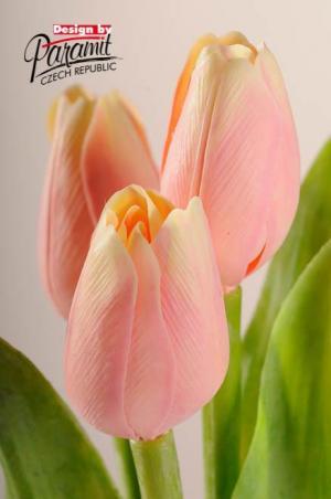 Paramit Tulipán kus 40cm ružovo-žltý 107 A