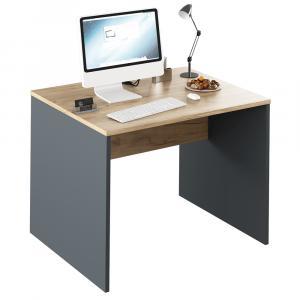 Písací stôl, grafit/dub artisan, RIOMA NEW TYP 12