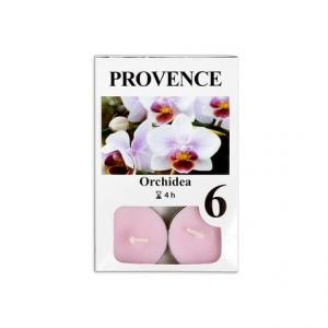 Provence Sviečka čajová Orchidea, 6ks