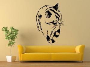 Samolepka na zeď Kočka 0427