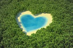 Srdce Fototapeta 5169 - vliesová