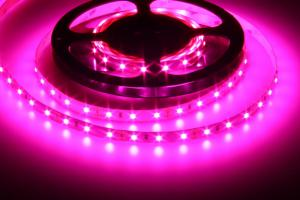 T-LED LED pásik 12W/m 12V bez krytia IP20 plnospektrálný 078081