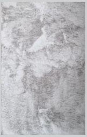 Umelá Kožušina Denise 2, 120/160cm