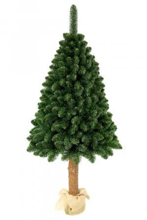 Umelý vianočný stromček Borovica Prírodná na pníku 180cm