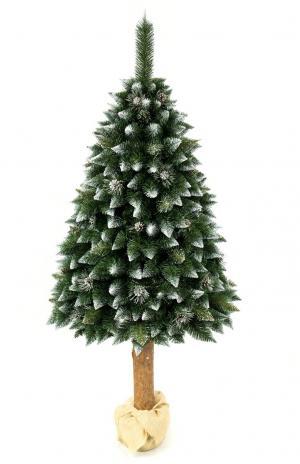 Umelý vianočný stromček Borovica Strieborná s kryštálmi ľadu na pníku 220cm