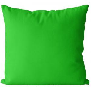 Vankúš Zelený jarný (Veľkosť: 55 x 55 cm)