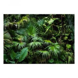 Veľkoformátová tapeta Artgeist Sunny Jungle, 400 x 280 cm