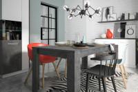 Jedáleň v kontrastných farbách s prvkami industrializmu
