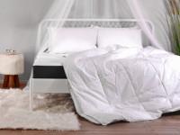 Kovová manželská posteľ s baldachýnom do spálne