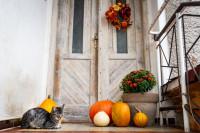 Jesenný veniec na dverách a dekorácie pred dverami