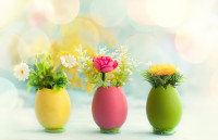 Jarné kvietky vo vaječných škrupinkách