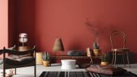 Drevená lavica a stolička s prírodnými dekoráciami v boho obývačke s červenou stenou
