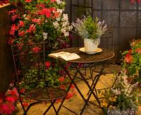 Ľahké kovové stoličky a okrúhly stolík v zimnej záhrade