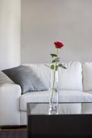 Biela pohovka a sklenená váza s ružou v modernej obývačke