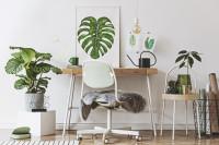 Malý písací stôl v pracovni s rastlinnými dekoráciami