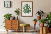Nízka drevená komoda a rastlinné dekorácie