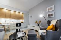 Sivé kreslo ušiak v modernej obývačke s kuchyňou