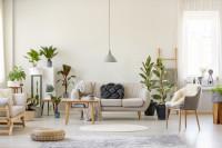Pohovka a drevený stolík vo svetlej škandinávskej obývačke