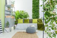 Pohovka s dekoračnými vankúšmi v obývačke so zeleňou