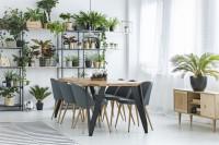 Drevený jedálenský stôl so sivými stoličkami a izbové rastliny