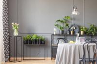 Kovové odkladacie stolíky s rastlinami v sivej jedálni