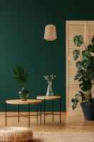 Okrúhle stolíky v zelenej obývačke s prírodnými doplnkami