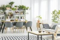 Jedálenský set v obývačke s množstvom zelene