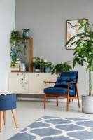 Modré kreslo a biela komoda s izbovými rastlinami