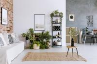 Regále s izbovými rastlinami v obývačke s tehlovou stenou