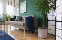 Sivá retro pohovka v kontraste so zelenou stenou