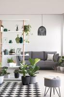 Sivá pohovka a drevený regál v škandinávskej obývačke
