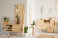 Izbové rastliny a nízke komody zo svetlého dreva