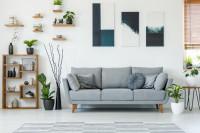 Sivá pohovka s vankúšmi a rastlinné dekorácie