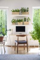 Písací stôl a drevená stolička v pracovni s množstvom zelene