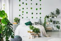 Posteľ a kovový regál v bielej spálni s izbovými rastlinami